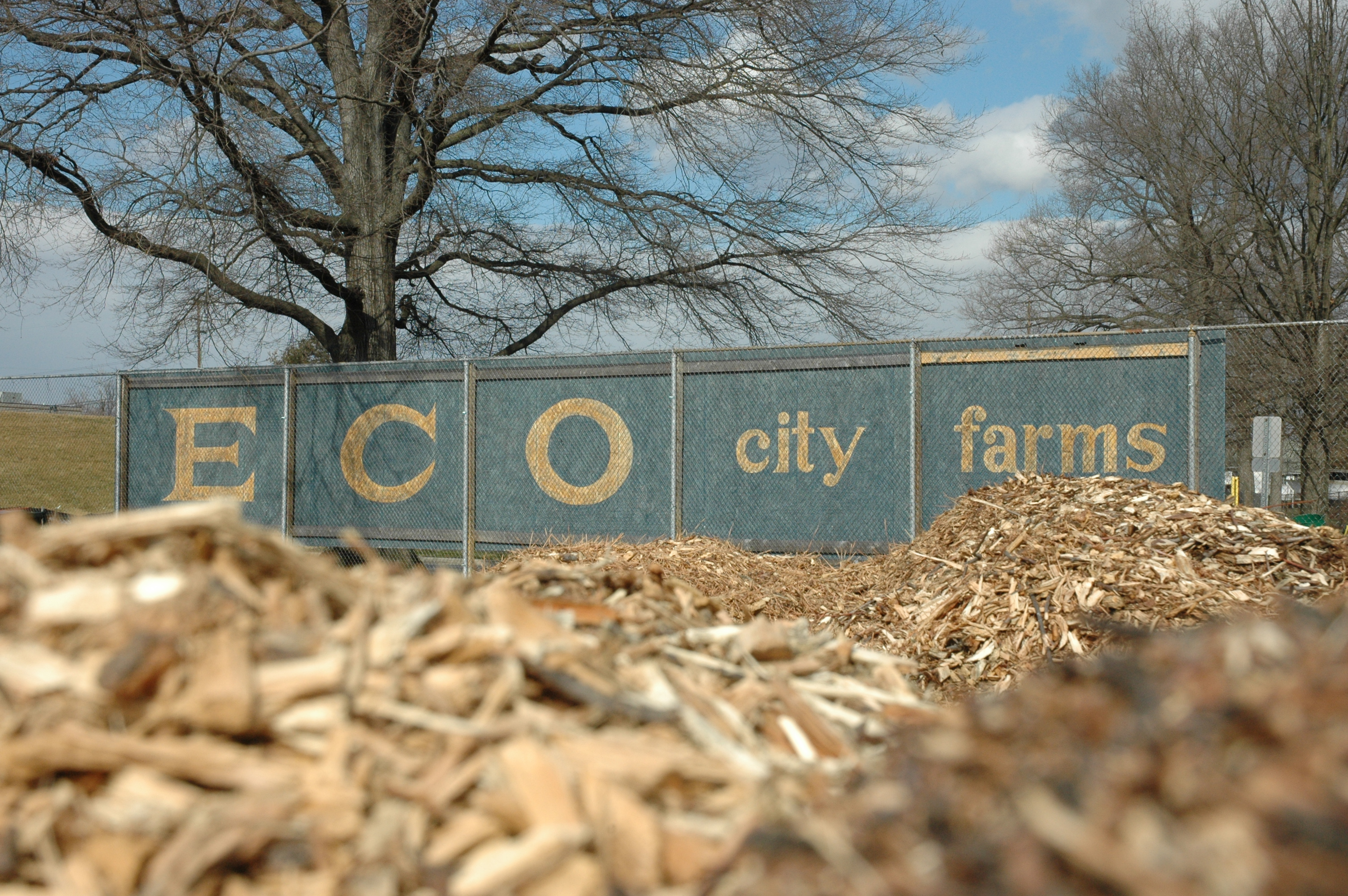 Not long ago, ECO City Farms expanded its operation to include old tennis courts, where wood chips await use.