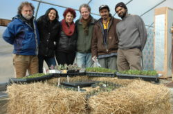 """Staffers at ECO City Farms in Edmonston stand in front of a straw and compost """"incubator"""" that nurtures seedlings in the plant nursery. From left to right, Benny Erez, Viviana Lindo, Margaret Morgan-Hubbard, Matthew Carucci, Christian Melendez and John Costa."""