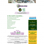 actual Mid Nov 2010 Newsletter