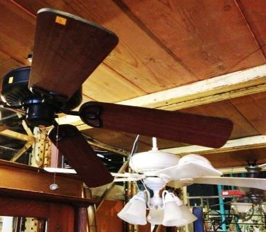 ceiling fans cropped