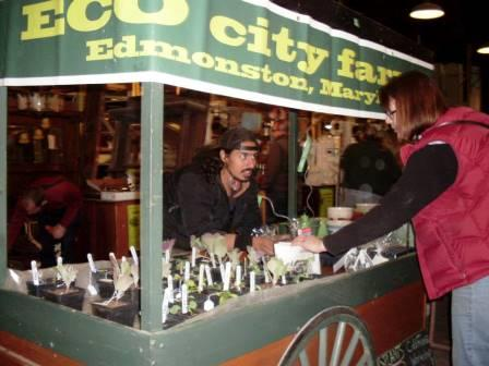 Christian selling ECO city farms seedlings compressed