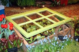 colorful cold frame