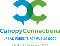 CT_CanopyConnections
