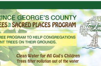Free trees for congregations in Prince George's County!