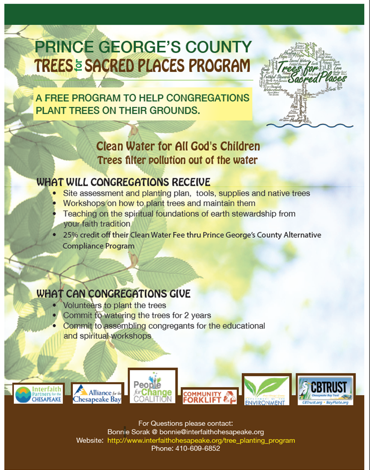 Trees for Sacred Places flyer - front side