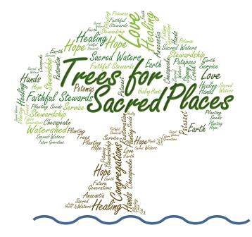 Trees_For_Sacred_Places_logo compressed
