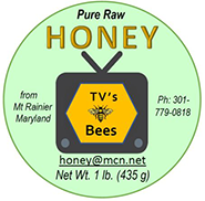 TV's Bees